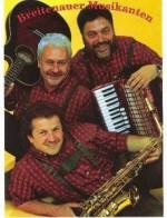 Breitenauer Musikanten